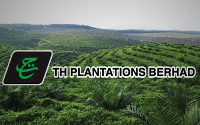 Utusan dedah TH Plantation rugi dan terpaksa jual aset