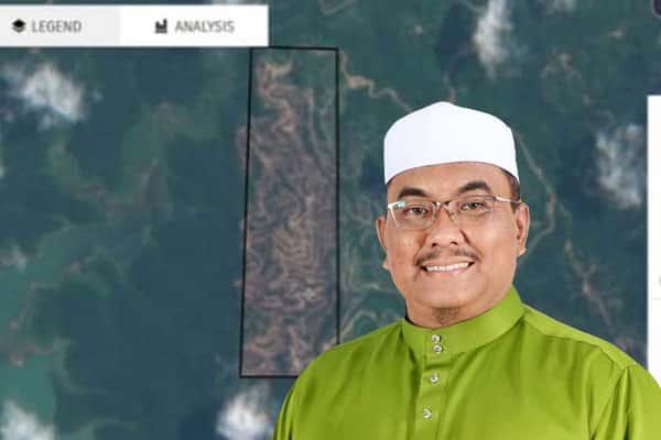 Hutan Kedah 'botak' kerana pembalakan dakwa persatuan alam sekitar